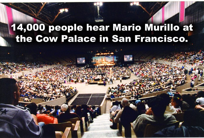 cow palace blog copy